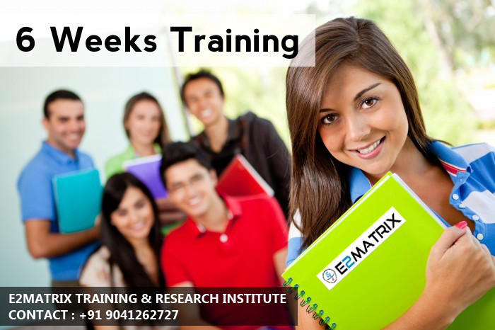 Best 6 Weeks Training in Jalandhar | Ludhiana | Phagwara | Amritsar | Mohali | Chandigarh