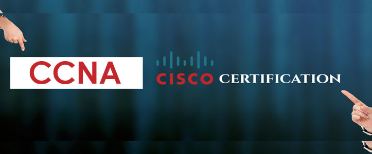 CCNA Training in Jalandhar | CCNA Training in Institute Jalandhar