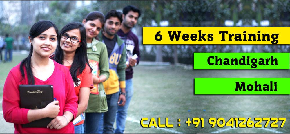 6 Weeks Training in Mohali   6 Weeks Training in Chandigarh